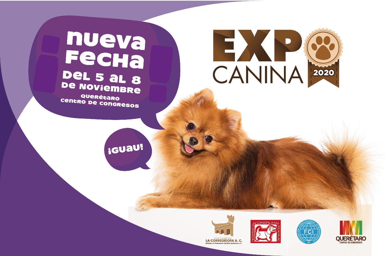 Expo Canina-Nueva fecha